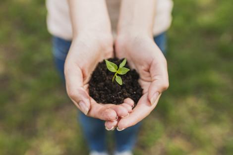La condición humana frente a los retos que plantea la ecología