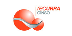 https://www.ginso.org/