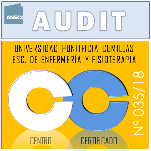 logo_audit_EUEF
