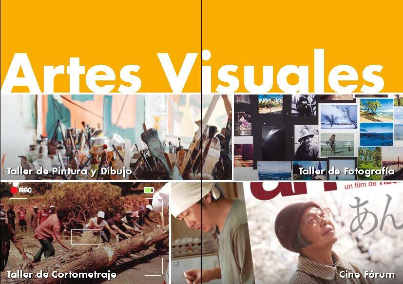 Culturales-artes visuales